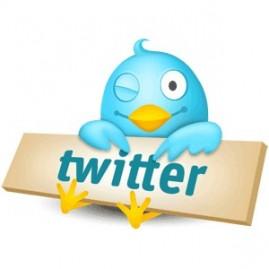 Как заработать с помощью Twitter аккаунта?