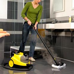 Бизнес идея: Как можно заработать на уборке?