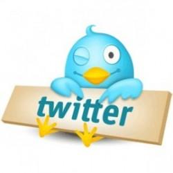 Как заработать в сервисе Twitter?