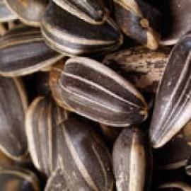 Бизнес идея: производство и продажа жареных семечек