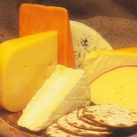 Бизнес идея: производство сыра