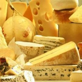 Бизнес идея: открываем производство сыра