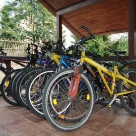 Бизнес идея: как открыть прокат велосипедов?